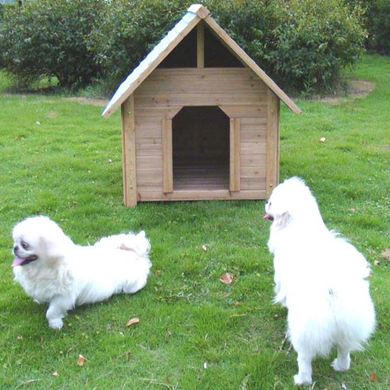 Cuccia per cani 50000862